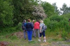 Sentier botanique4