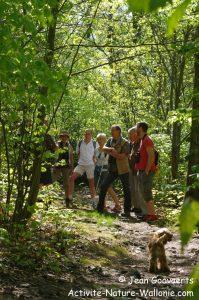 activite-nature-wallonie-jean-goovaerts-arboratum