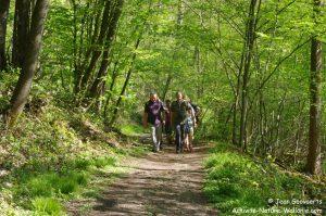 activite-nature-wallonie-jean-goovaerts-la-grimpette